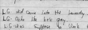 Statement made by Anthony Hollingsowrth, cousin to LG, to police. May 1993
